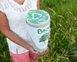 A Biodegradable Urn from Preventdisease.com (Picture Source: Preventdisease.com)