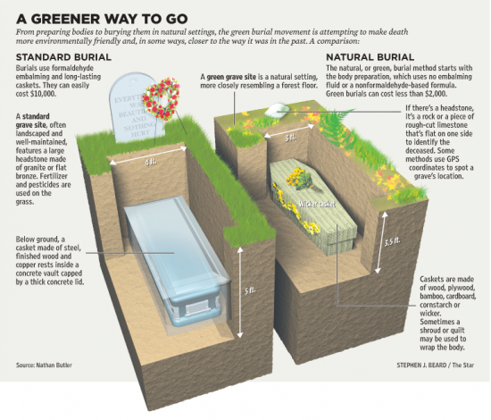 A-Greener-Way-To-Go-Standard-Burial-Versus-Natural-Green-Burial